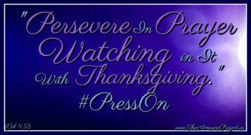 11.24.19 #PRESSON