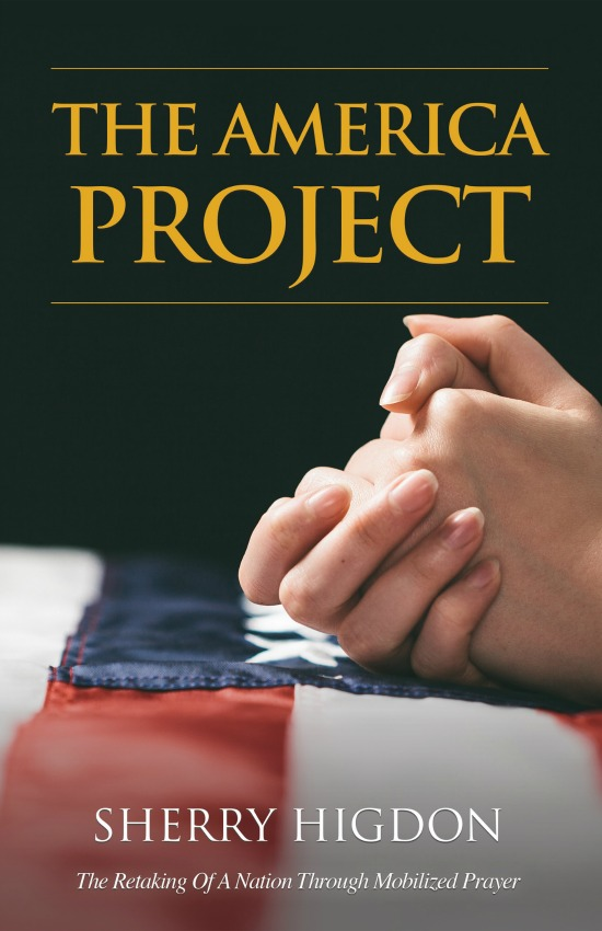 _The America Project Front Cover 150