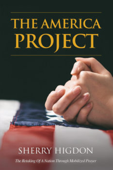 The America Project Front Cover